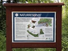 Munkhyttans NR, ett Natura 2000 område i Västmanland. En av få platser i Europa där asknätfjäril finns.