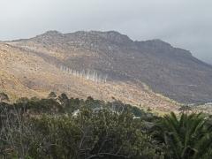 Stora områden runt Kapstaden hade drabbats av våldsamma bränder och vi hade tur att vårt besök i de här trakterna  inte blev inställt.