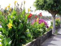 Kanalen ner till la Charca