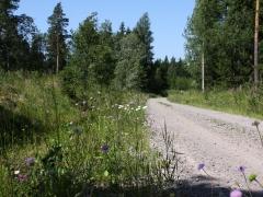 Fjärilsvägen, Grinduga, Gävle, Gästrikland.